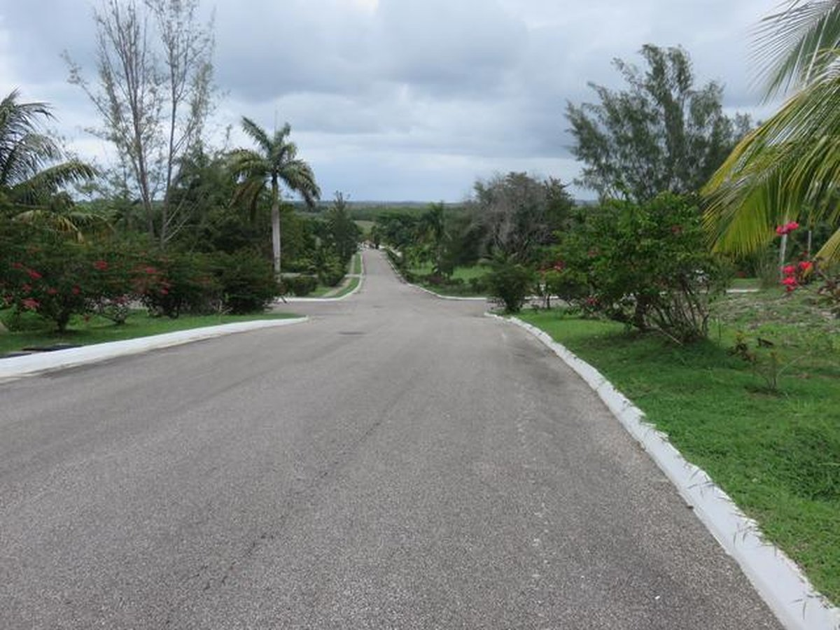 paved roads at negril estate jamaica land for sale