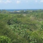 Residential Land for Sale in Negril Jamaica