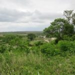land for sale in negril westmoreland jamaica gated community estate