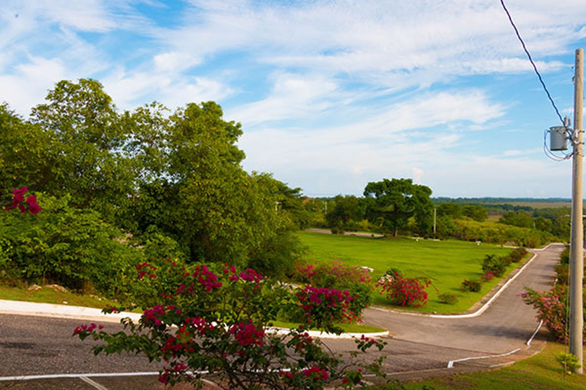 lushing garden parks next to lot 100 for sale negril estate westmoreland jamaica